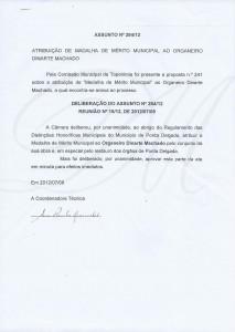 Medalha Mérito_Comissão Municipal de Toponímia PD